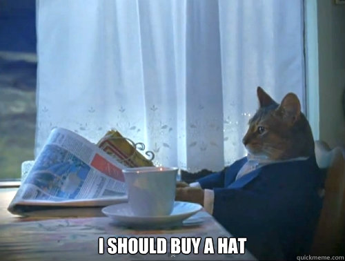 i should buy a hat - The One Percent Cat
