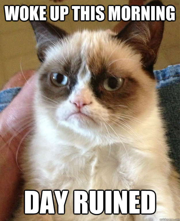 woke up this morning day ruined - Grumpy Cat