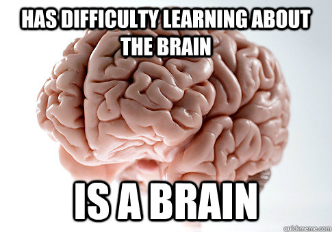 has difficulty learning about the brain is a brain - Scumbag Brain
