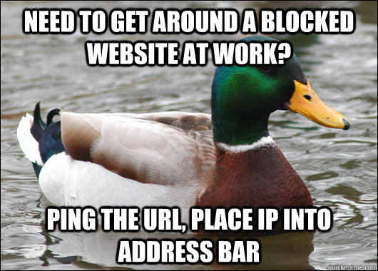 need to get around a blocked website at work ping the url  - Actual Advice Mallard