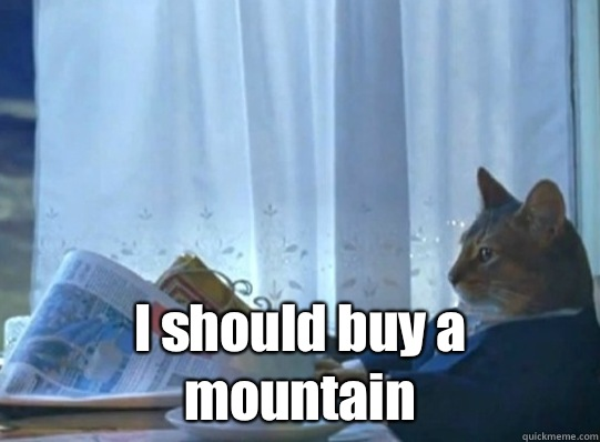  I should buy a mountain - Sophisticated cat