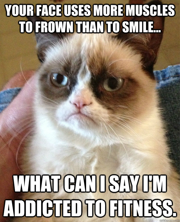 your face uses more muscles to frown than to smile what c - Grumpy Cat