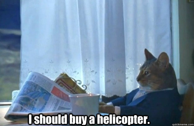 i should buy a helicopter - Sophisticated Cat is broke