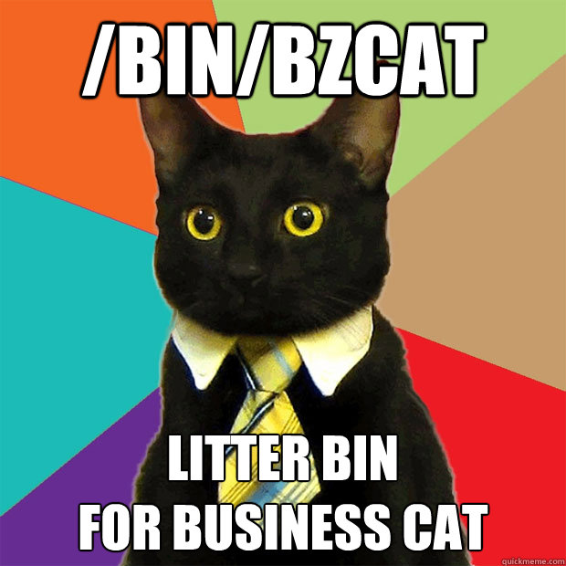 binbzcat litter bin for business cat  - Business Cat