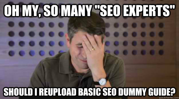 oh my so many seo experts should i reupload basic seo dum - Facepalm Matt Cutts