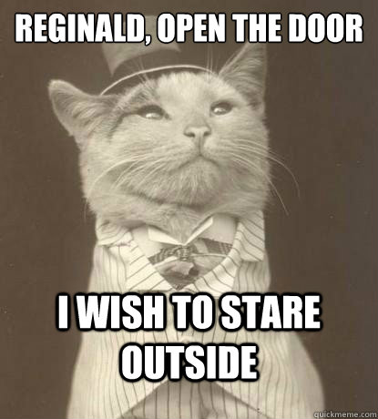 reginald open the door i wish to stare outside  - Aristocat