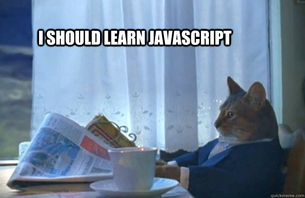 i should learn javascript - Sophisticated Cat