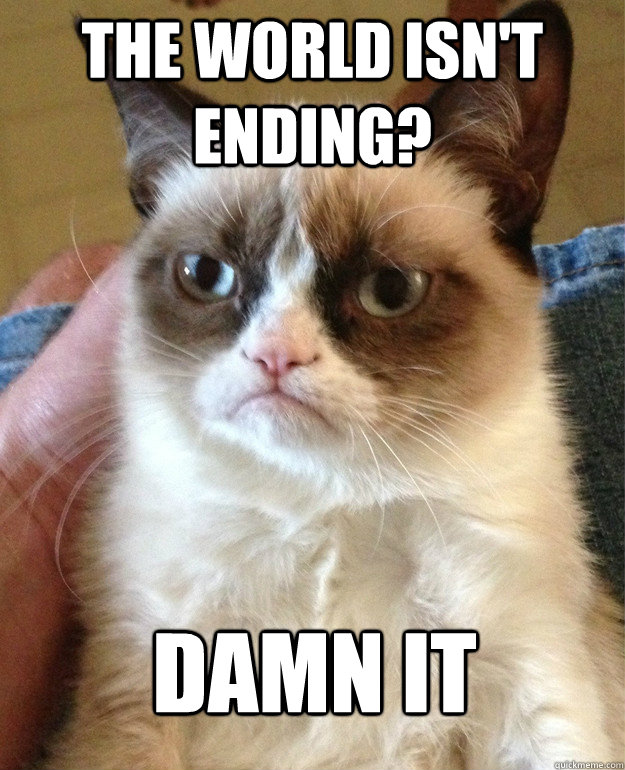 the world isnt ending damn it - Grumpy Cat