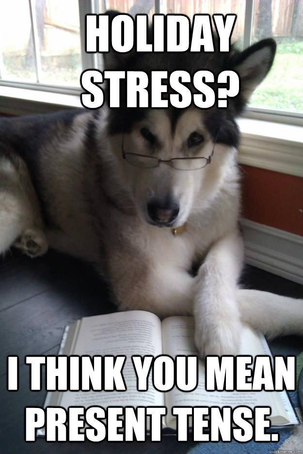 holiday stress i think you mean present tense - Condescending Literary Pun Dog