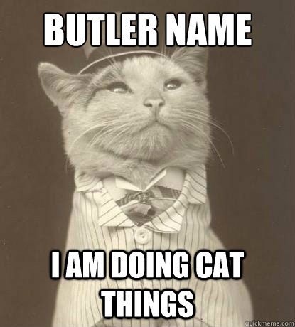 butler name i am doing cat things - Aristocat