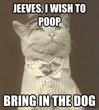 jeeves i wish to poop bring in the dog - Aristocat