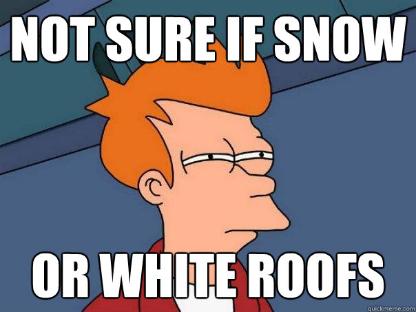 not sure if snow or white roofs - Futurama Fry
