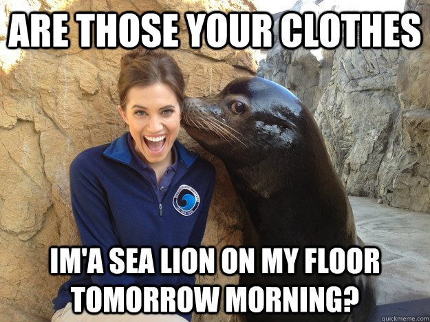 are those your clothes ima sea lion on my floor tomorrow mo - Crazy Secret