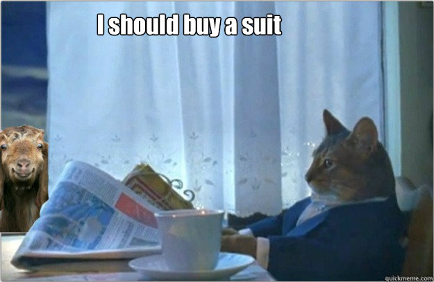 i should buy a suit - Sophisticated cat with a goat.