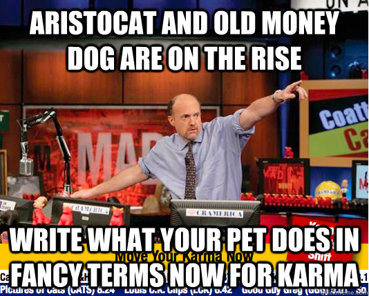 aristocat and old money dog are on the rise write what your  - move your karma now