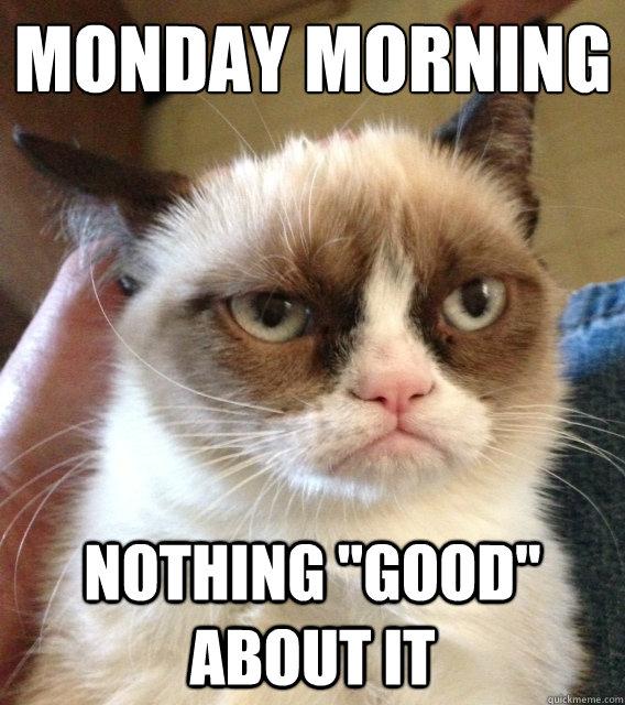 - Grumpy Cat Meme ...