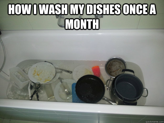 how i wash my dishes once a month  -