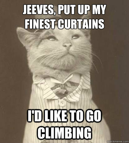 jeeves put up my finest curtains id like to go climbing - Aristocat
