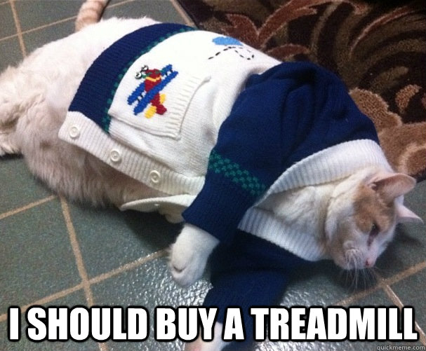 i should buy a treadmill - Boat Cat