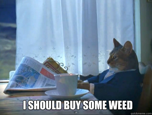 i should buy some weed - 1 Cat
