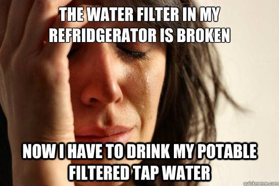 the water filter in my refridgerator is broken now i have to - First World Problems