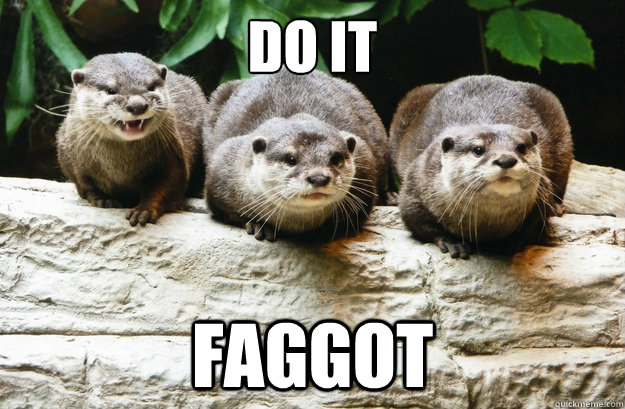 do it faggot - Schadenfreude Otters