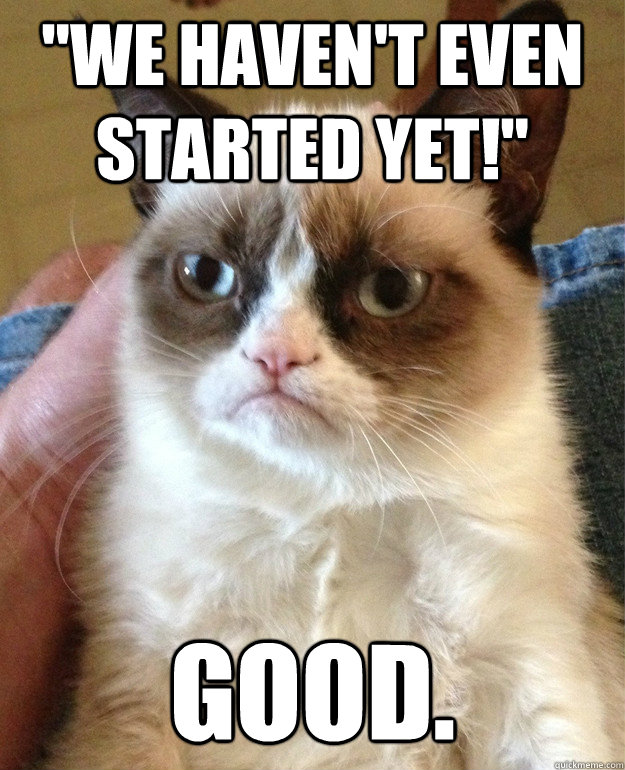 we havent even started yet good - Grumpy cat