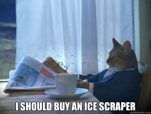i should buy an ice scraper - The One Percent Cat