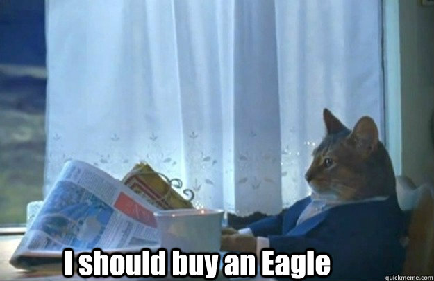i should buy an eagle - Sophisticated Cat is broke