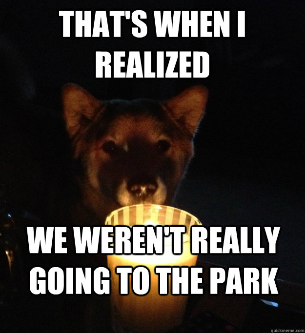 thats when i realized we werent really going to the park - Scary Story Dog