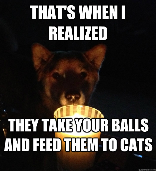 thats when i realized they take your balls and feed them to - Scary Story Dog