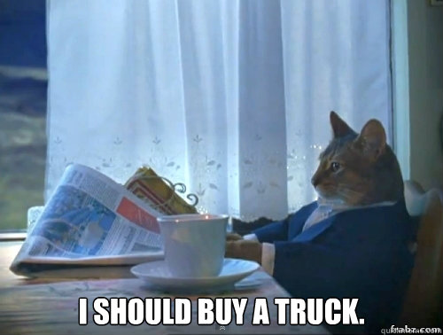 i should buy a truck - Contemplative Breakfast Cat