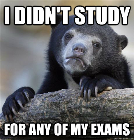 i didnt study for any of my exams - Confession Bear