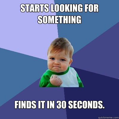 starts looking for something finds it in 30 seconds - Success Kid