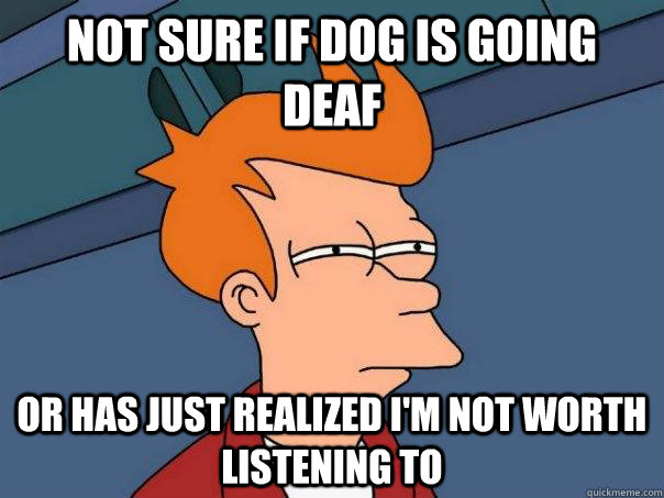 not sure if dog is going deaf or has just realized im not w - Futurama Fry