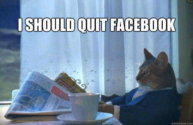 i should quit facebook - Sophisticated Cat