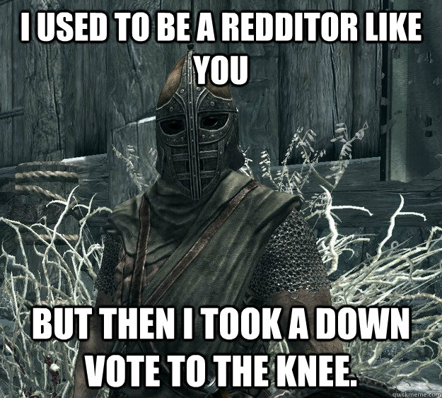 i used to be a redditor like you but then i took a down vote - Skyrim Guard