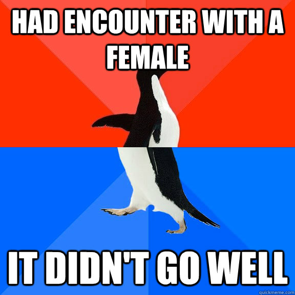 had encounter with a female it didnt go well - Socially Awesome Awkward Penguin