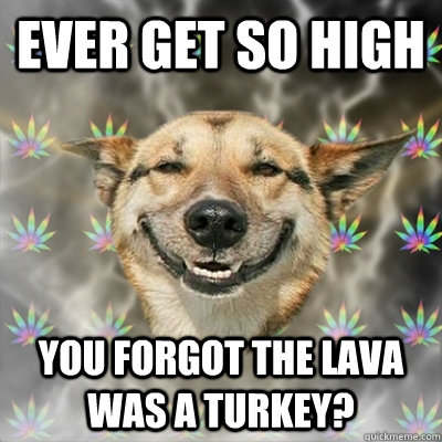 ever get so high you forgot the lava was a turkey - Stoner Dog