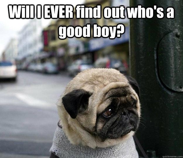 will i ever find out whos a good boy  - Depressed dog