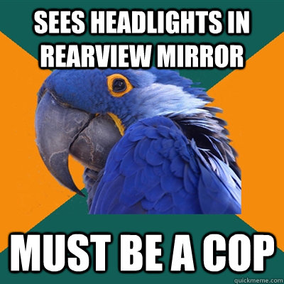 sees headlights in rearview mirror must be a cop - Paranoid Parrot