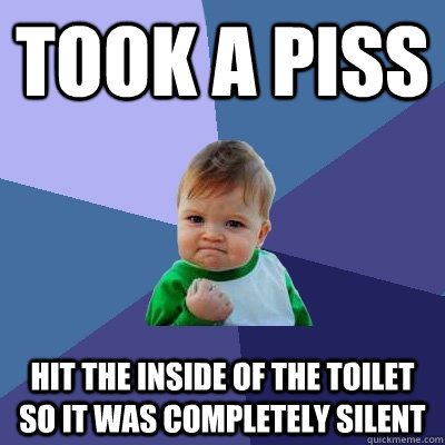 took a piss hit the inside of the toilet so it was completel - Success Kid