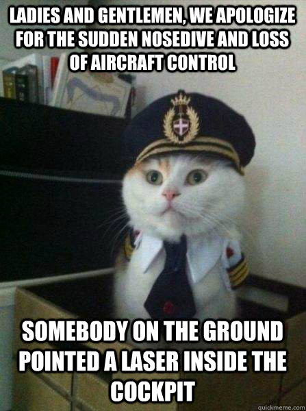 ladies and gentlemen we apologize for the sudden nosedive a - Captain kitteh