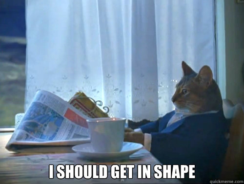 i should get in shape - The One Percent Cat