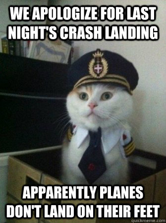 we apologize for last nights crash landing apparently plan - captain kitty