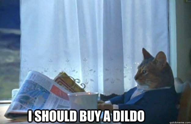 i should buy a dildo - Sophisticated Cat is broke