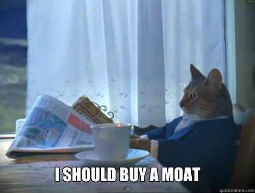 i should buy a moat - The One Percent Cat