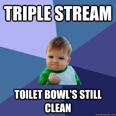 triple stream toilet bowls still clean - Success Kid