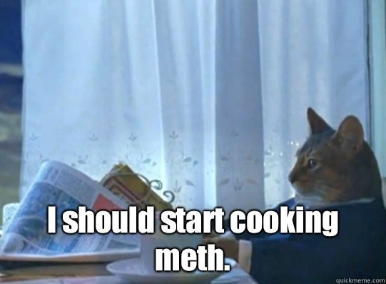 I should start cooking meth - Sophisticated cat