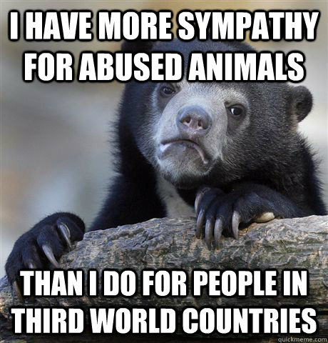 i have more sympathy for abused animals than i do for people - Confession Bear